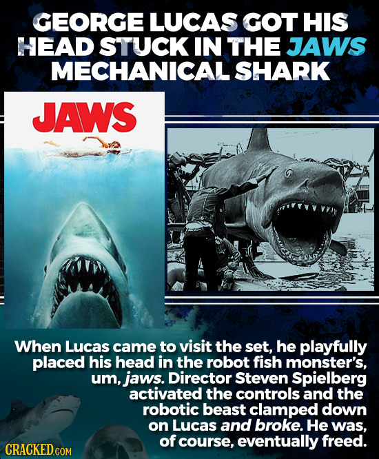 GEORGE LUCAS GOT HIS HEAD STUCK IN THE JAWS MECHANICAL SHARK JAWS When Lucas came to visit the set, he playfully placed his head in the robot fish mon
