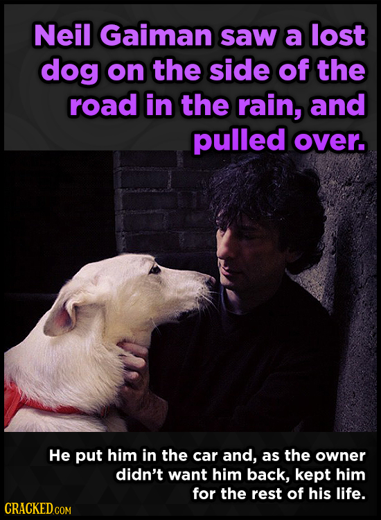 Neil Gaiman saw a lost dog on the side of the road in the rain, and pulled over. He put him in the car and, as the owner didn't want him back, kept hi