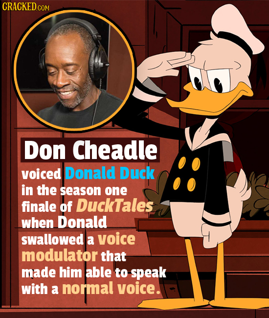 CRACKED c Don Cheadle voiced Donald Duck in the season one finale of DuckTales when Donald swallowed a voice modulator that made him able to speak wit