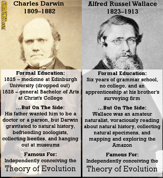 20 Uneducated Dropouts Who Changed Human History