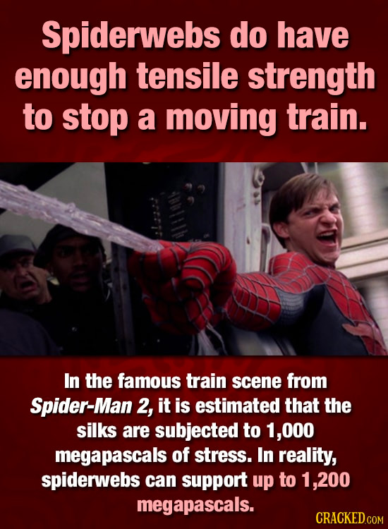 Spiderwebs do have enough tensile strength to stop a moving train. In the famous train scene from Spider-Man 2, it is estimated that the silks are sub