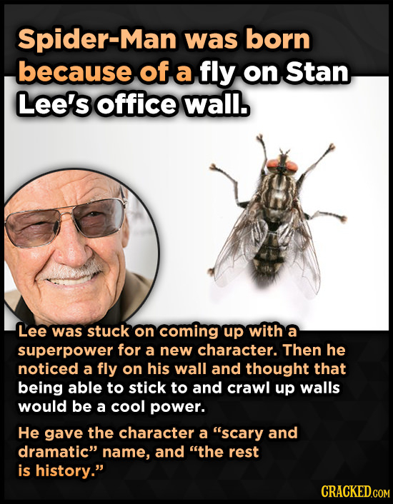 Spider-Man was born because of a fly on Stan Lee's office wall. Lee was stuck on coming up with a superpower for a new character. Then he noticed a fl