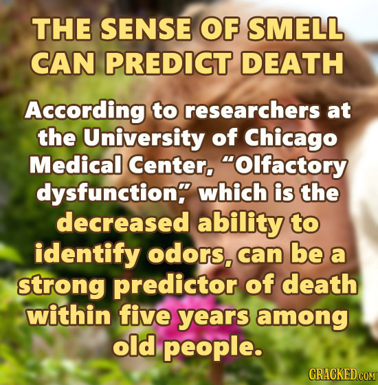 THE SENSE OF SMELL CAN PREDICT DEATH According to researchers at the University of Chicago Medical Center, Olfactory dysfunction which is the decrea