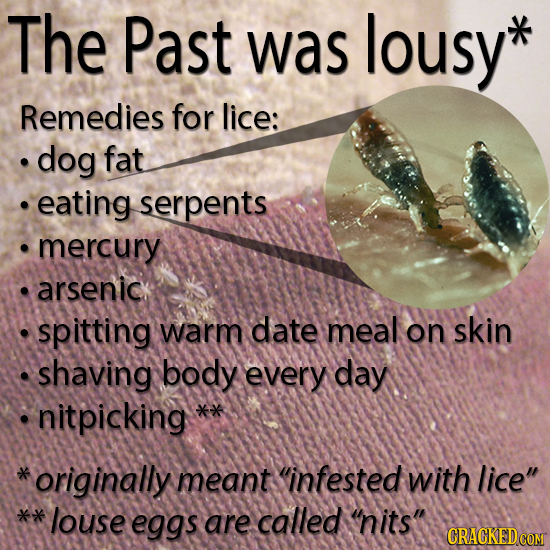 The Past was lousy* Remedies for lice: dog fat eating serpents mercury arsenic. spitting warm date meal on skin shaving body every day nitpicking *ori