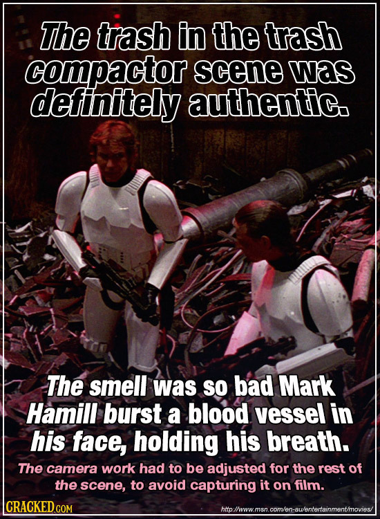 The trash in the trash compactor scene was deftinitely authentic. The smell was So bad Mark Hamill burst a blood vessel in his face, holding his breat