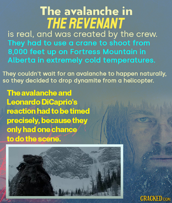 The avalanche in THE REVENANT is real, and was created by the crew. They had to use a crane to shoot from 8,000 feet up on Fortress Mountain in Albert