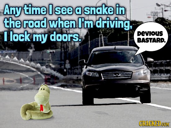 Any time 0 see a snake in the road when I'm driving, lock my doors. DEVIOUS BASTARD.