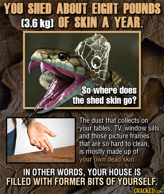 14 Fascinating, Super-Disturbing Facts About The Human Body