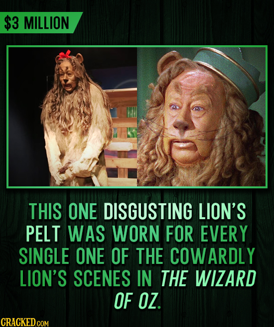 $3 MILLION THIS ONE DISGUSTING LION'S PELT WAS WORN FOR EVERY SINGLE ONE OF THE COWARDLY LION'S SCENES IN THE WIZARD OF OZ.