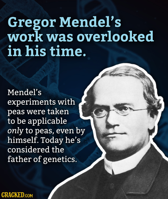 Gregor Mendel's work was overlooked in his time. Mendel's experiments with peas were taken to be applicable only to peas, even by himself. Today he's