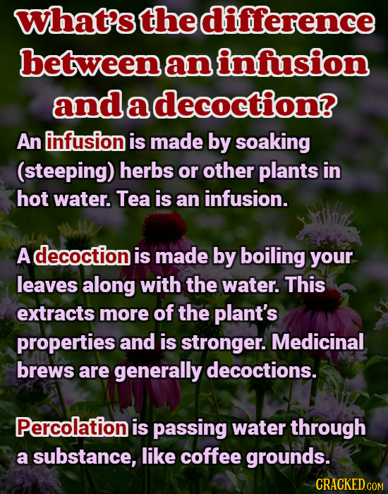 What's the difference between an infusion and a decoction? An infusion is made by soaking (steeping) herbs or other plants in hot water. Tea is an inf