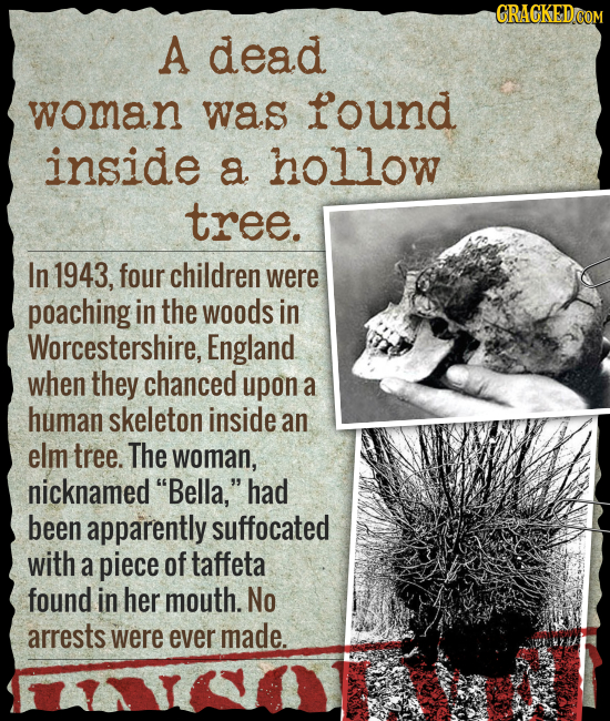 CRACKED A dead woman was found inside a hollow tree. In 1943, four children were poaching in the woods in Worcestershire, England when they chanced up