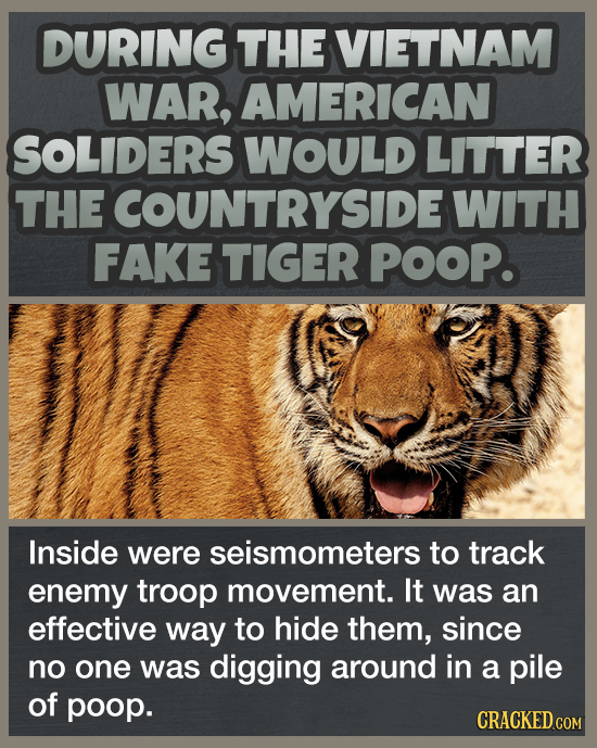 DURING THE VIETNAM WAR, AMERICAN SOLIDERS WOULD LITTER THE ECOUNTRYSIDE WITH FAKE TIGER POOP. Inside were seismometers to track enemy troop movement.