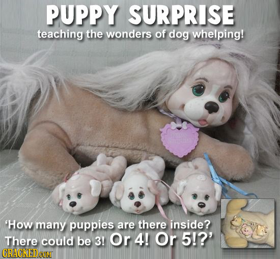 PUPPY SURPRISE teaching the wonders of dog whelping! 'How many puppies are there inside? There could be 3! Or 4! Or 5!?' CRACKEDCONT