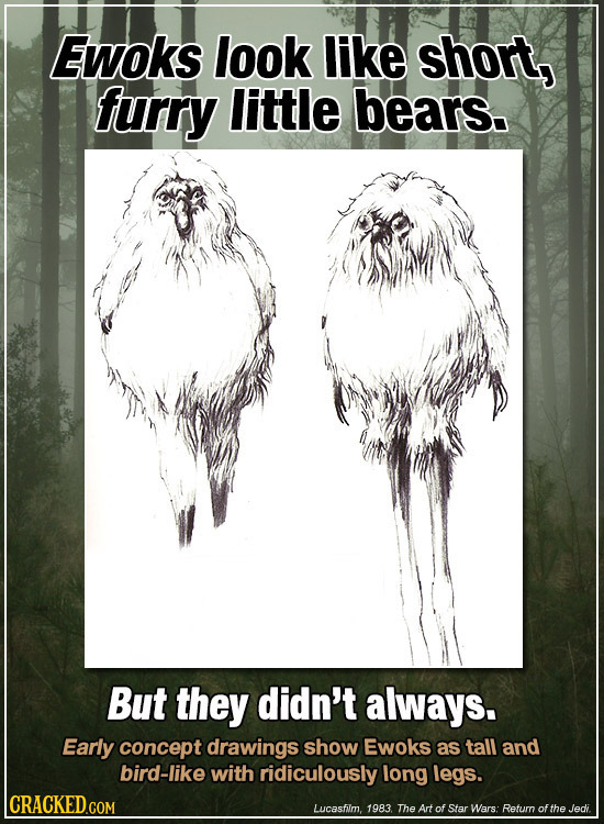 Ewoks look like short, furry little bears. But they didn't always. Early concept drawings show Ewoks as tall and bird-like with ridiculously long legs