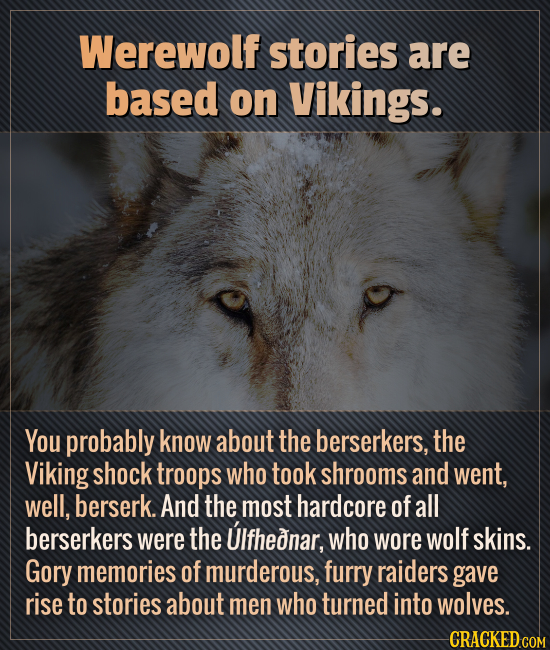 Werewolf stories are based on Vikings. You probably know about the berserkers, the Viking shock troops who took shrooms and went, well, berserk. And t