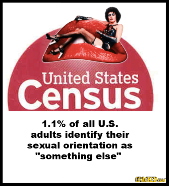 Census United States 1.1% of all U.S. adults identify their sexual orientation as something else CRACKEDCON