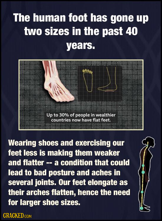 The human foot has gone up two sizes in the past 40 years. Up to 30% of people in wealthier countries now have flat feet. Wearing shoes and exercising
