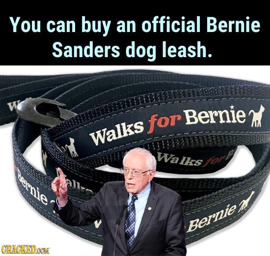 You can buy an official Bernie Sanders dog leash. W for Bernie Walks WaUrshory Bernie CRACKEDOON