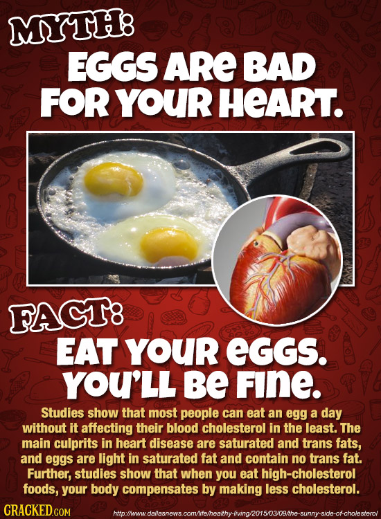 MYTH8 EGGS ARE BAD FOR YOUR HEART. FAGT8 EAT YOUR EGGS. YOU'LL BE FINE. Studies show that most people can eat an egg a day without it affecting their