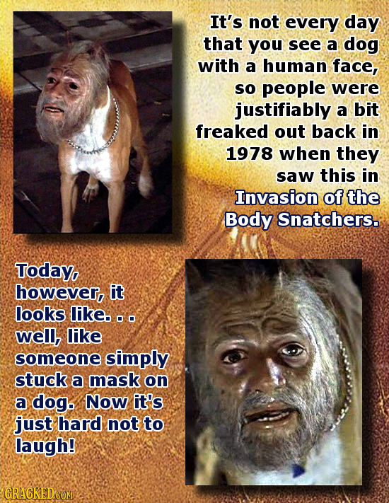 It's not every day that you see a dog with a human face, SO people were justifiably a bit freaked out back in 1978 when they saw this in Invasion of t