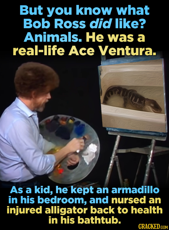 But you know what Bob Ross did like? Animals. He was a real-life Ace Ventura. As a kid, he kept an armadillo in his bedroom, and nursed an injured all