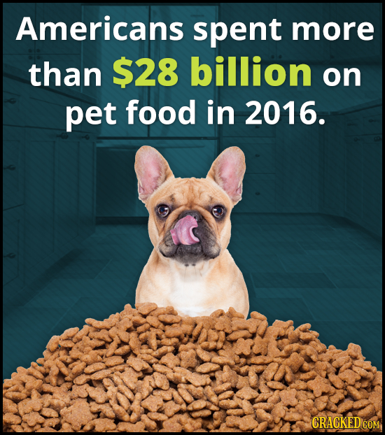 Americans spent more than $28 billion on pet food in 2016.