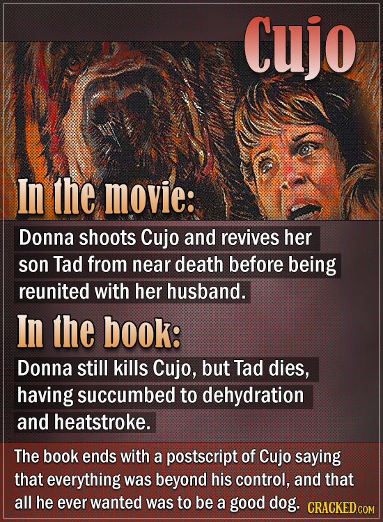 Cujo In the movie: Donna shoots Cujo and revives her son Tad from near death before being reunited with her husband. In the book: Donna still kills Cu