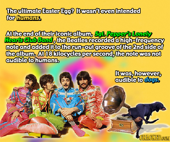 The ultimate Easter Egg? twasn'to even intended for humans. Atthe end of their iconic album, Sgt, Pepper'sLonely Hearts Club Band, the Beatles recorde