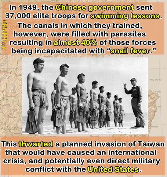 In 1949, the Chinese government sent 37.000 elite troops for swimming lessons. CRAGK The canals in which they trained, however, were filled with paras