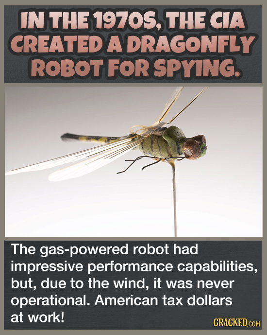 IN THE 19705, THE CIA CREATED A DRAGONFLY ROBOT FOR SPYING. The -powered robot had impressive performance capabilities, but, due to the wind, it was n