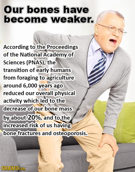 Our bones have become weaker. According to the Proceedings of the National Academy of Sciences (PNAS), the transition of early humans from foraging to