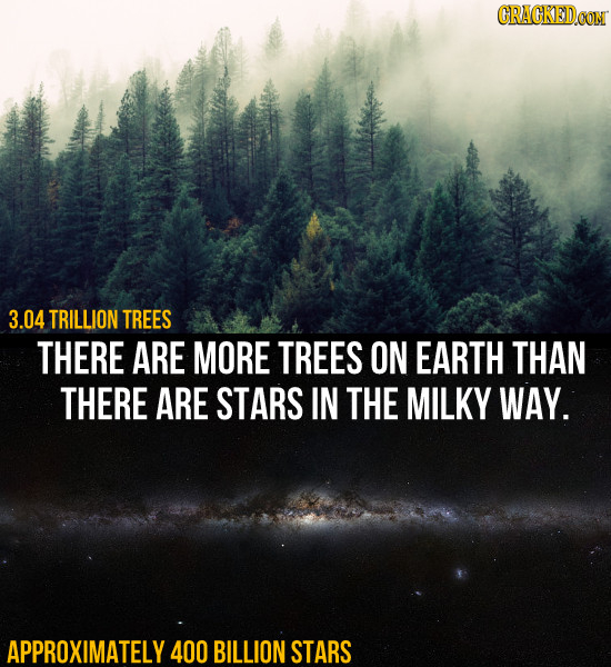 CRACKEDCON 3.04 TRILLION TREES THERE ARE MORE TREES ON EARTH THAN THERE ARE STARS IN THE MILKY WAY. APPROXIMATELY 400 BILLION STARS