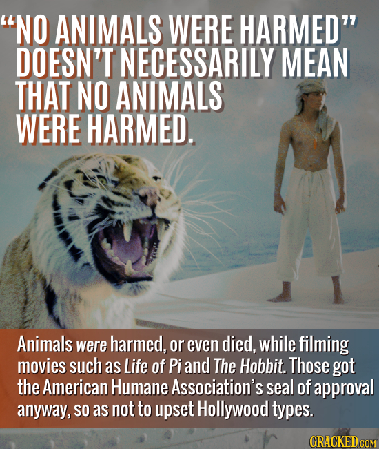 NO ANIMALS WERE HARMED DOESN'T NECESSARILY MEAN THAT NO ANIMALS WERE HARMED. Animals were harmed, or even died, while filming movies such as Life of