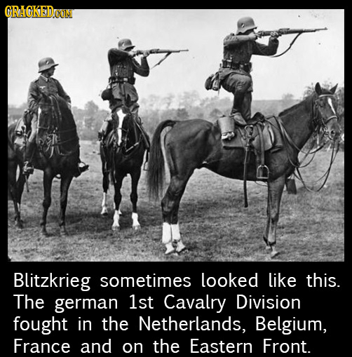 CRAGKEDCON Blitzkrieg sometimes looked like this. The german 1st Cavalry Division fought in the Netherlands, Belgium, France and on the Eastern Front.