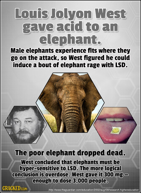 Louis Jolyon West gave acid to an elephant. Male elephants experience fits where they go on the attack, so West figured he could induce a bout of elep