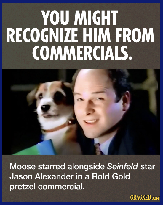 YOU MIGHT RECOGNIZE HIM FROM COMMERCIALS. Moose starred alongside Seinfeld star Jason Alexander in a Rold Gold pretzel commercial. CRACKED COM