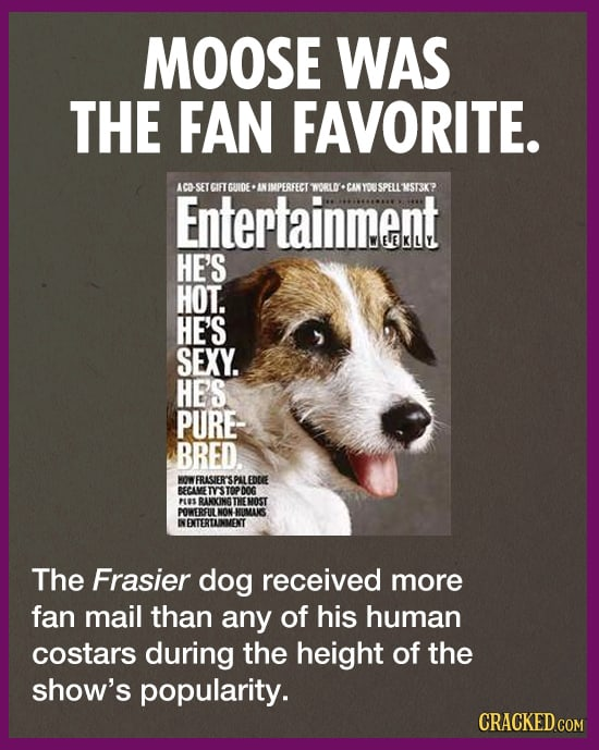 The Dog From 'Frasier' Was Secretly One Of The Most Accomplished Dogs