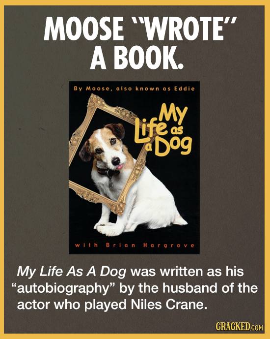 MOOSE 'WROTE A BOOK. By M oosc. also known as Eddie My Life aS Dog a with Brian Hargrove My Life As A Dog was written as his autobiography by the