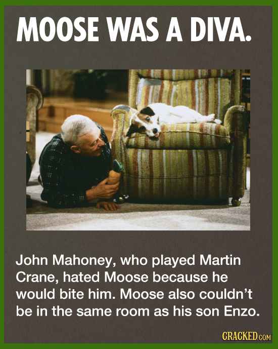 MOOSE WAS A DIVA. John Mahoney, who played Martin Crane, hated Moose because he would bite him. Moose also couldn't be in the same room as his son Enz