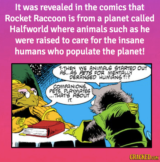 It was revealed in the comics that Rocket Raccoon is from a planet called Halfworld where animals such as he were raised to care for the insane humans
