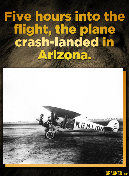 Five hours into the flight, the plane crash-landed in Arizona. M.G.MLIDN