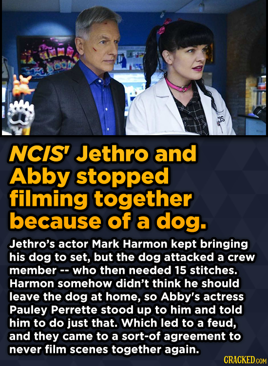 Ridiculous Behind-The-Scenes Stories From Your Favorite Movies And Shows - NCIS' Jethro and Abby stopped filming together because of a dog.