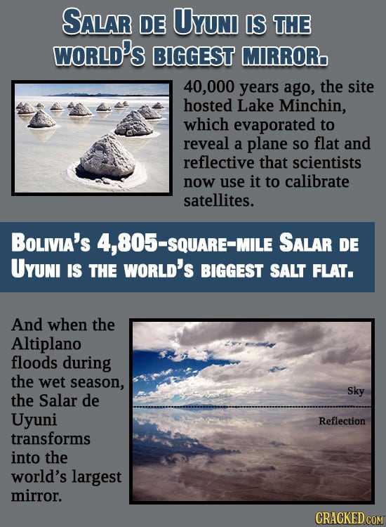 12 Ludicrously Huge Things Produced By The Natural World