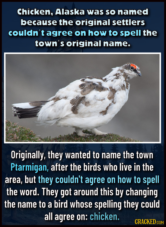 Chicken, Alaska was So named because the original settlers couldn't agree on how to spell the town's original name. Originally, they wanted to name th
