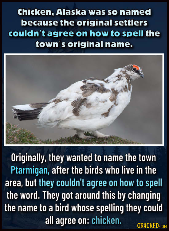 27 Head-Scratching Reasons For The Names Of Common Stuff