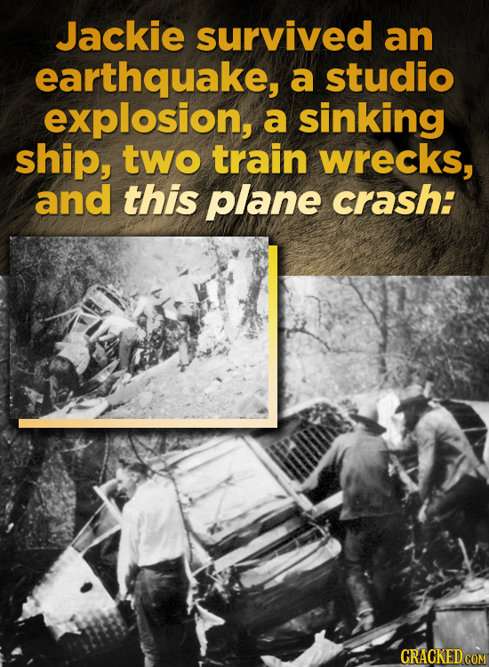 Jackie survived an earthquake, a studio explosion, a sinking ship, two train wrecks, and this plane crash: CRACKED COM
