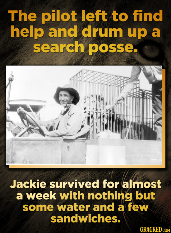 The pilot left to find help and drum up a search POsSe Jackie survived for almost a week with nothing but some water and a few sandwiches.