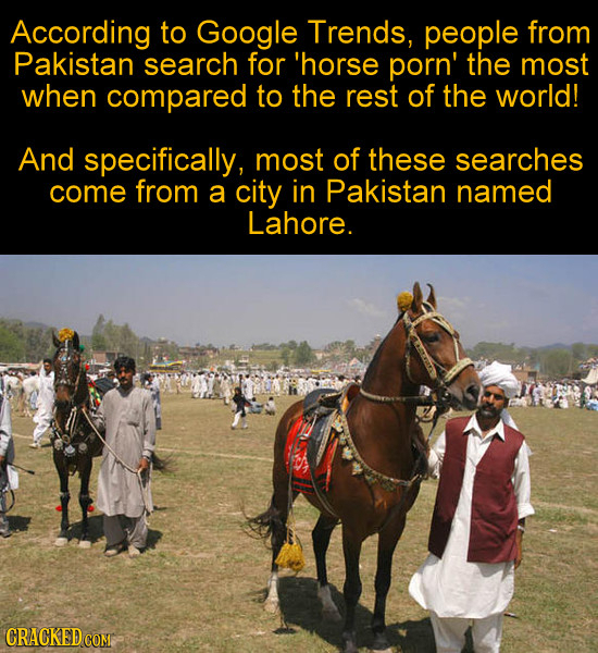 According to Google Trends, people from Pakistan search for 'horse porn' the most when compared to the rest of the world! And specifically, most of th