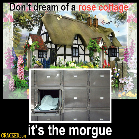 Don't dream of a rose cottage loup Grapinm it's the morgue CRACKED.COM